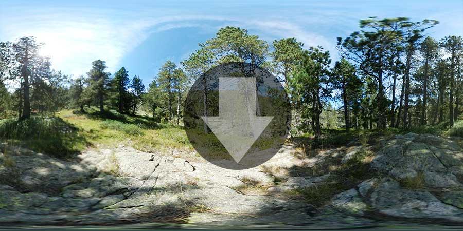Miniatura-web-Fotografia-360-grados-En-el-bosque-02-GrupoAudiovisual-Descargas360