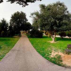 Foto-360-Camino-en-Naturaleza-13K-descargas360