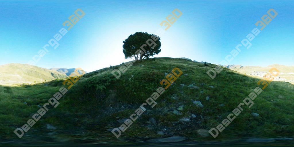 Amanecer-con-árbol-360-Montaña---Descargas360_peview
