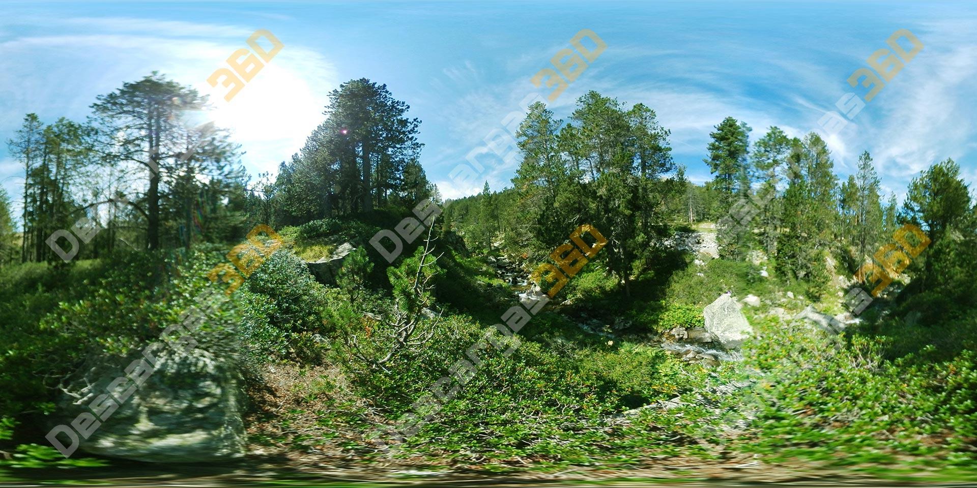 Bosque-frondoso-con-río-360-Naturaleza---Descargas360_preview