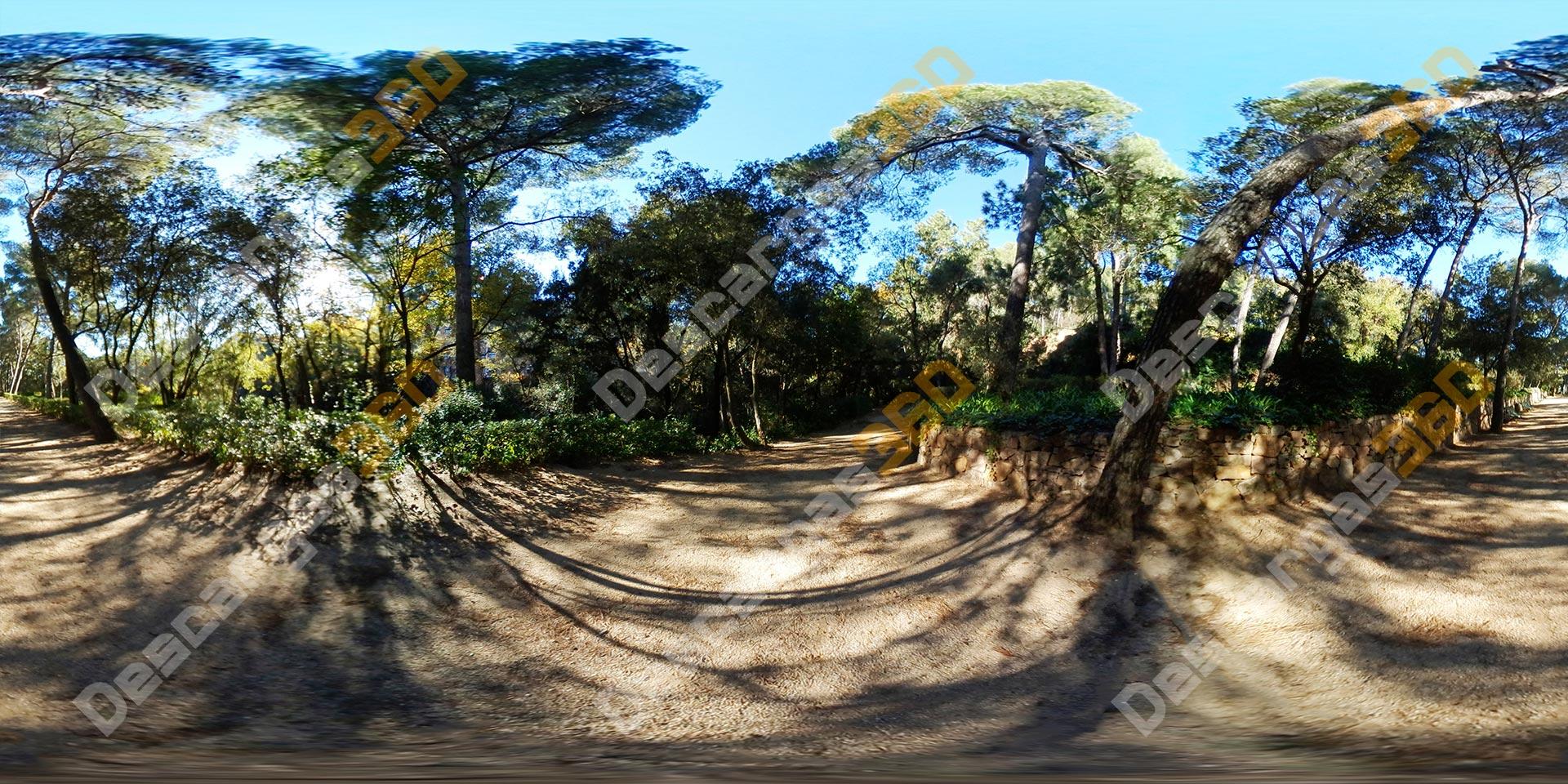 Camino-con-muro-entre-árboles-en-parque-360-Naturaleza---Descargas360