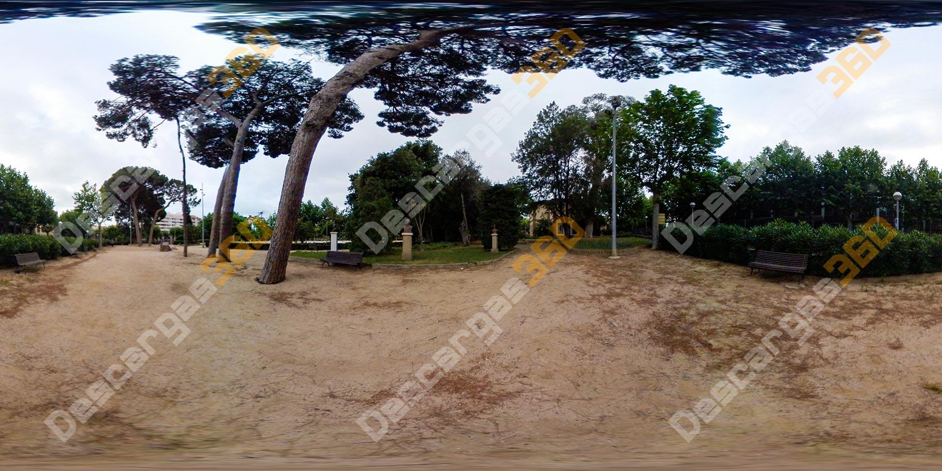 Camino-de-pinos-en-parque-360---Descargas360_preview