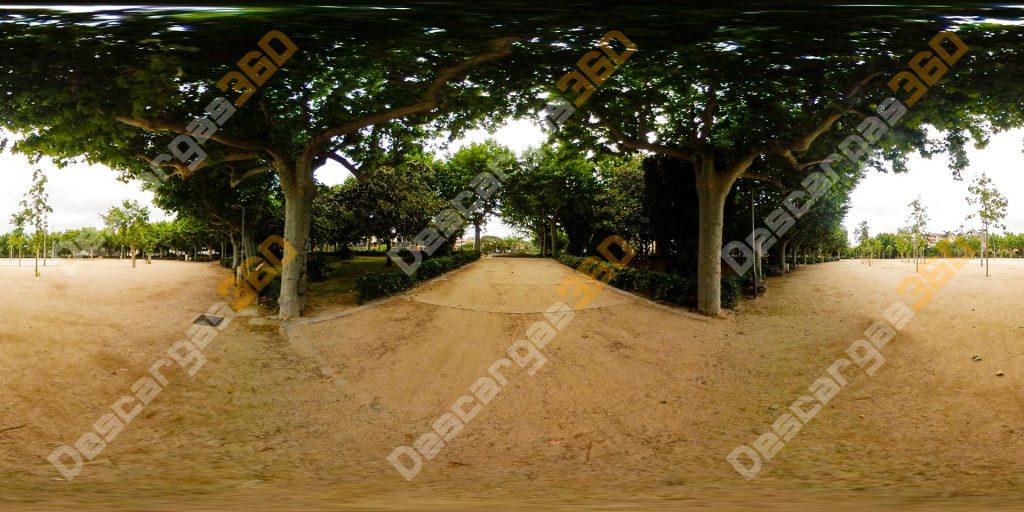 Camino-entre-árboles-en-parque-360-Naturaleza---Descargas360